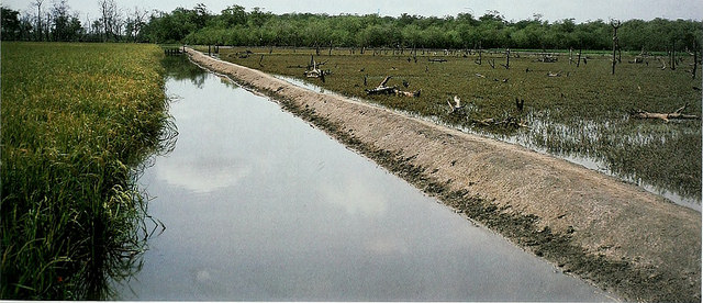 Farmer irrigation